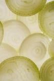 κρεμμύδι στοκ εικόνες με δικαίωμα ελεύθερης χρήσης