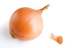 κρεμμύδι Στοκ φωτογραφία με δικαίωμα ελεύθερης χρήσης
