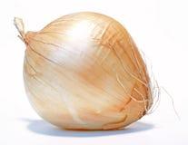 κρεμμύδι στοκ φωτογραφίες με δικαίωμα ελεύθερης χρήσης