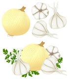 Κρεμμύδια και σκόρδο Στοκ φωτογραφίες με δικαίωμα ελεύθερης χρήσης