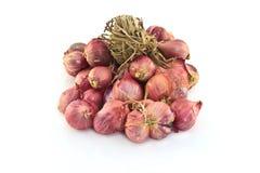 Κρεμμύδια κρεμμυδιών Στοκ εικόνα με δικαίωμα ελεύθερης χρήσης