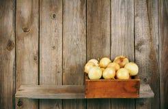 Κρεμμύδια σε ένα κιβώτιο Στοκ φωτογραφία με δικαίωμα ελεύθερης χρήσης