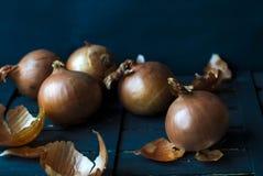 Κρεμμύδια σε ένα σκοτεινό υπόβαθρο Στοκ Φωτογραφία