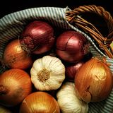 Κρεμμύδια στο καλάθι Στοκ Εικόνες