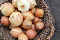 Κρεμμύδια στο καλάθι Στοκ φωτογραφία με δικαίωμα ελεύθερης χρήσης