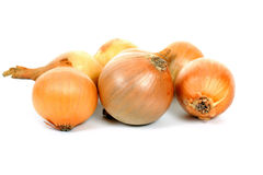 κρεμμύδια Στοκ Φωτογραφία