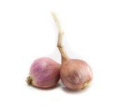 κρεμμύδια Στοκ εικόνα με δικαίωμα ελεύθερης χρήσης