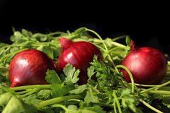 Κρεμμύδι και πράσινα Στοκ Εικόνες