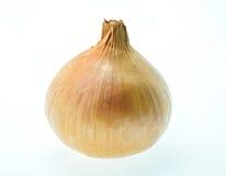 Κρεμμύδι σε μια άσπρη ανασκόπηση Στοκ Φωτογραφία