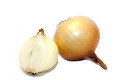 Κρεμμύδι σε μια άσπρη ανασκόπηση στοκ φωτογραφία με δικαίωμα ελεύθερης χρήσης