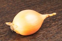 Κρεμμύδι στην ξύλινη επιφάνεια Στοκ Εικόνες