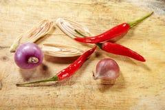 Κρεμμύδι χορταριών και κόκκινα τσίλι Στοκ εικόνες με δικαίωμα ελεύθερης χρήσης