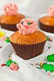 κρεμώδεις στρόβιλοι cupcake Στοκ φωτογραφία με δικαίωμα ελεύθερης χρήσης