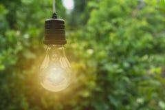 Κρεμώντας λάμπες φωτός με καμμένος μια Έννοια ιδέας και δημιουργικότητας στοκ εικόνες
