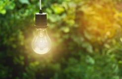 Κρεμώντας λάμπες φωτός με καμμένος μια Ιδέα και δημιουργικότητα στοκ φωτογραφία με δικαίωμα ελεύθερης χρήσης