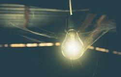 Κρεμώντας λάμπες φωτός με καμμένος το ένα και αράχνη Ιστού στοκ εικόνα με δικαίωμα ελεύθερης χρήσης