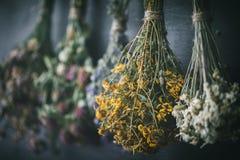 Κρεμώντας δέσμες των ιατρικών χορταριών, εστίαση στο λουλούδι hypericum στοκ φωτογραφία με δικαίωμα ελεύθερης χρήσης
