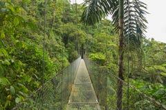 Κρεμώντας γέφυρα, Κόστα Ρίκα Στοκ εικόνα με δικαίωμα ελεύθερης χρήσης