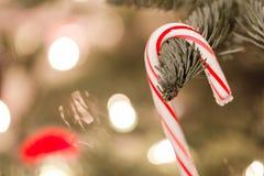 κρεμώντας δέντρο διακοσμήσεων Χριστουγέννων στοκ εικόνες