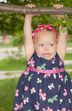 κρεμώντας δέντρο κλάδων girle Στοκ φωτογραφία με δικαίωμα ελεύθερης χρήσης