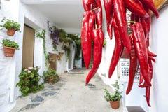 Κρεμώντας δέσμη των κόκκινων πιπεριών τσίλι για την πώληση στην πόλη Pampaneira Στοκ φωτογραφία με δικαίωμα ελεύθερης χρήσης