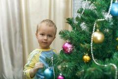 Κρεμώντας διακοσμήσεις μικρών παιδιών για τις ερυθρελάτες Χριστουγέννων στοκ εικόνες με δικαίωμα ελεύθερης χρήσης