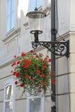 Κρεμώντας δοχείο λουλουδιών οδών στοκ εικόνα με δικαίωμα ελεύθερης χρήσης