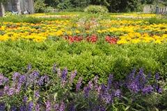 Κρεμώντας κήποι Lillafured Στοκ Εικόνες