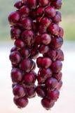 Κρεμώντας κόκκινα κρεμμύδια στοκ φωτογραφία