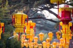 Κρεμώντας το κινεζικό φανάρι στο πάρκο που γιορτάζει υπαίθρια το νέο έτος Στοκ Εικόνες