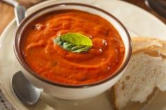 Κρεμώδης σούπα σούπας με θαλασσινά βασιλικού ντοματών στοκ εικόνα