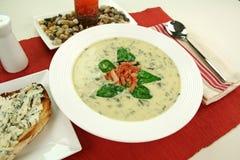 Κρεμώδης σούπα σπανακιού στοκ εικόνες με δικαίωμα ελεύθερης χρήσης