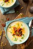 Κρεμώδης φορτωμένη ψημένη σούπα πατατών στοκ εικόνες