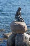 Κρησφύγετο Λίλλη Havfrue Στοκ Φωτογραφία