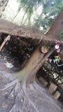 Κρησφύγετο νεράιδων στοκ φωτογραφίες με δικαίωμα ελεύθερης χρήσης