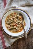 Κριθάρι και χορτοφάγος σούπα Στοκ φωτογραφίες με δικαίωμα ελεύθερης χρήσης