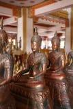 Κριοί του Βούδα Στοκ Εικόνα