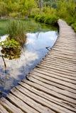 Κροατία, λίμνες Plitvice. Εθνικό πάρκο της ΟΥΝΕΣΚΟ. Στοκ εικόνα με δικαίωμα ελεύθερης χρήσης
