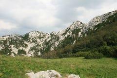 Κροατία/δύσκολα βουνά/Velebit Στοκ Εικόνα