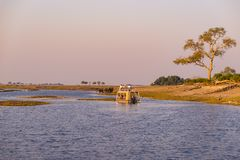Κρουαζιέρα βαρκών και σαφάρι άγριας φύσης στον ποταμό Chobe, σύνορα της Ναμίμπια Μποτσουάνα, Αφρική Εθνικό πάρκο Chobe, διάσημη ε στοκ εικόνες