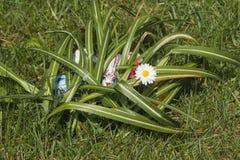 Κρυμμένα αυγά Πάσχας 2 στοκ φωτογραφίες