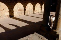 Κρυμμένη γάτα και η σκιά του Στοκ φωτογραφίες με δικαίωμα ελεύθερης χρήσης