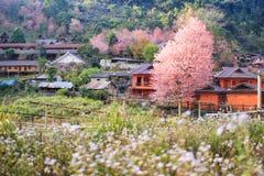 Κρυμμένο πορφυρό χωριό στοκ εικόνες