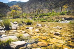 Κρυστάλλινος ποταμός α στο canion bandeirinhas στοκ εικόνες με δικαίωμα ελεύθερης χρήσης