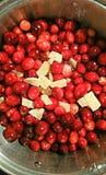 Κρυσταλλωμένα πιπερόριζα και το βακκίνιο Στοκ εικόνες με δικαίωμα ελεύθερης χρήσης