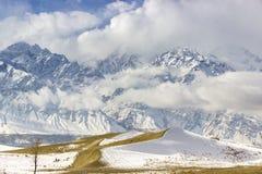 Κρύα έρημος Στοκ Φωτογραφία