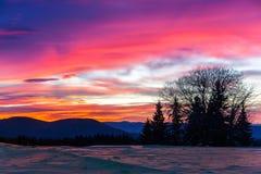 κρύα αυγή στοκ φωτογραφία με δικαίωμα ελεύθερης χρήσης