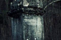Κρύα γκρίζα ταφόπετρα στοκ εικόνες
