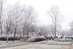 Κρύα ημέρα στη Βουδαπέστη, Ουγγαρία Στοκ εικόνες με δικαίωμα ελεύθερης χρήσης