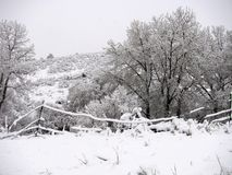 κρύα ημέρα Στοκ Φωτογραφίες